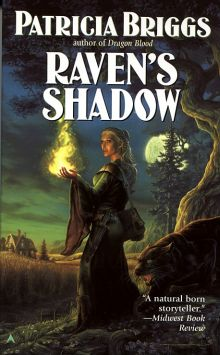 Original cover for Raven's Shadow